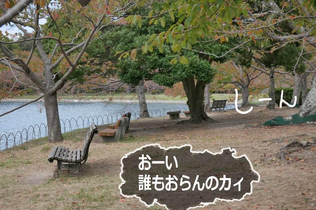 b0174191_16173136.jpg