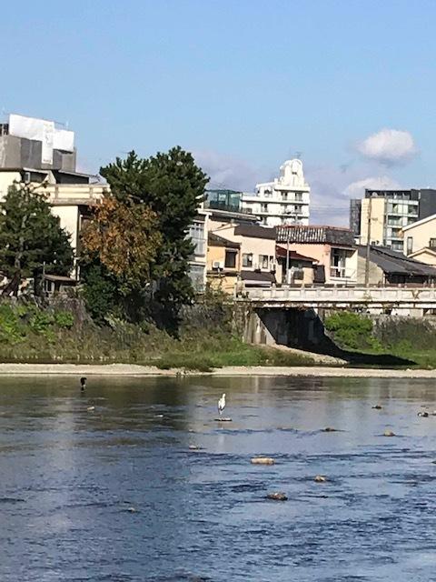 京都でランチ_f0204295_10535011.jpg