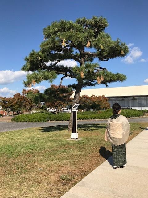 京都でランチ_f0204295_10564758.jpg