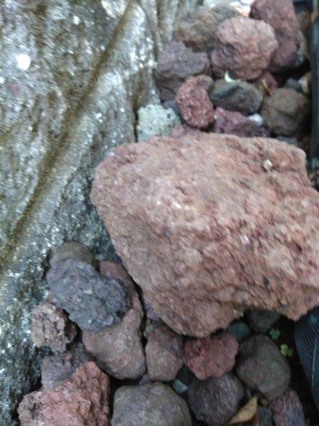 赤く染まった富士山_f0136398_20374290.jpg