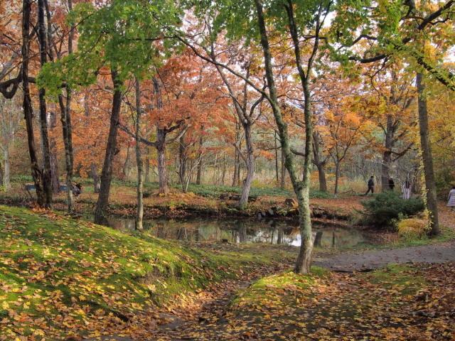 紅葉の大沼公園(秋の旅行 1日目10/27の①) _c0360399_17161183.jpg