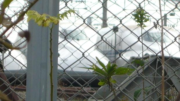 11月1日、博多総合車両所岡山支所前で本部情報を配りました_d0155415_12341176.jpg