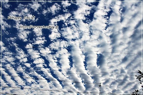 お稲荷さん弁当とひつじ雲♪_f0348032_17582575.jpg