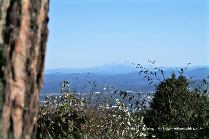 10月のひとり山歩き  アケボノソウを求めて_e0348754_08112522.jpg