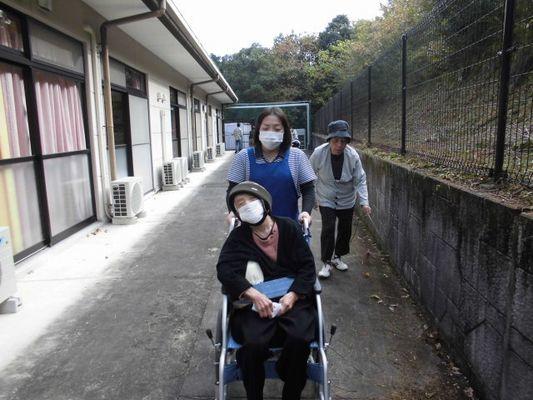 11/1 朝の散歩_a0154110_11464111.jpg