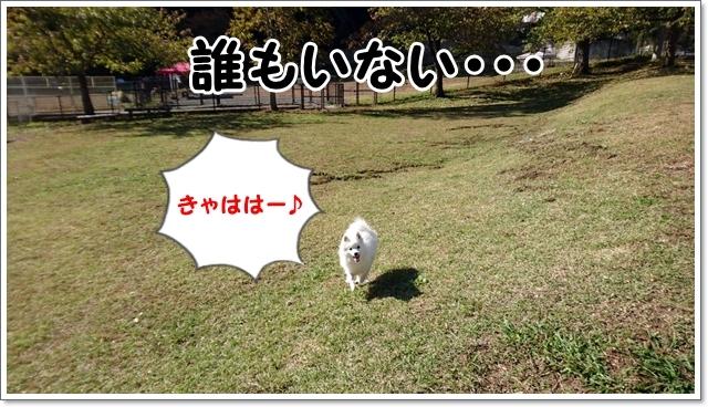 d0013149_00482041.jpg