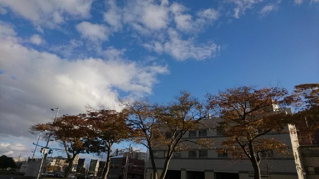 2018年11月2日(金)今朝の函館の天気と気温は。いか姫しおり人気です。ふらっと大門や竹葉新葉亭、本町市場にあります!いか姫カレンダー、津軽海峡フェリーターミナル売店買いやすいと人気!_b0106766_06335701.jpg