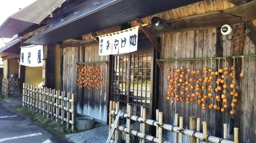 秋の風物「干し柿作り」実演中_e0160569_11345647.jpg