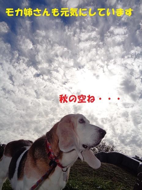 f0121712_00025274.jpg