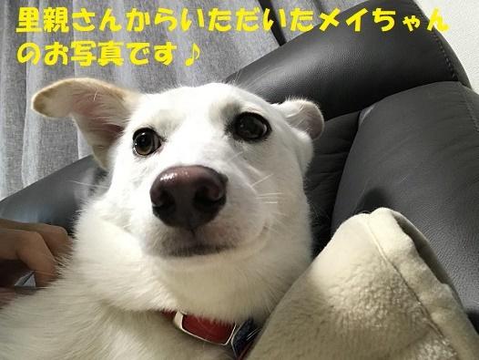f0121712_00143355.jpg