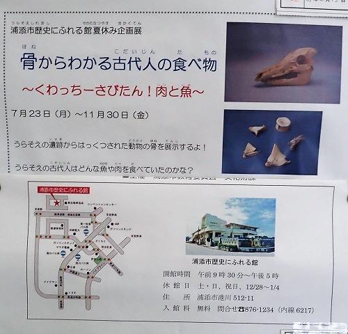 来年の計画作成とチラシの回収・パンフの配布_c0180460_16404903.jpg
