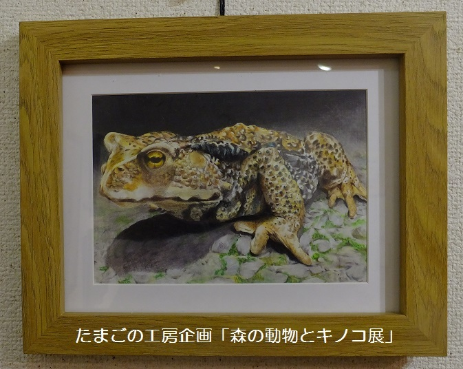 たまごの工房企画「森の動物とキノコ展」 その7_e0134502_10442630.jpg