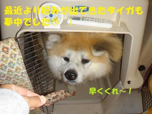 f0121712_14234114.jpg