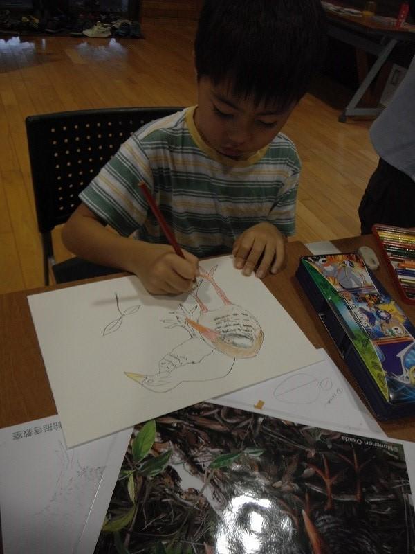 岡田宗徳さんによる「やんばるの動物 お絵かき教室」_f0121321_13032098.jpg