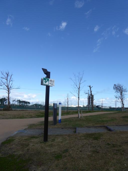 蒲生~海岸公園~荒浜へ_e0140354_13164752.jpg