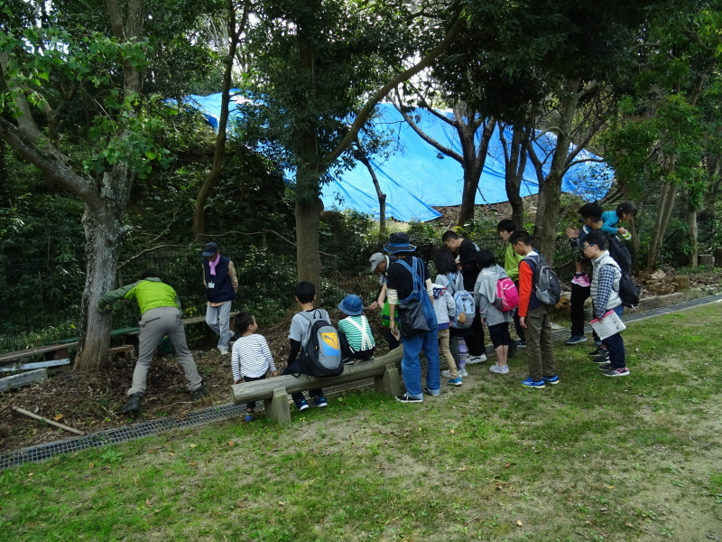 『さくらクラブ』(支援学園)「里山体験」・・・うみべの森_c0108460_18005674.jpg