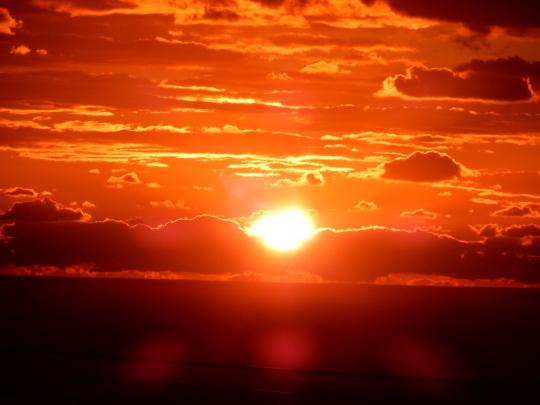 '18,11,4(日)真っ赤な太陽と鯛のカルパッチョ!_f0060461_12043814.jpg