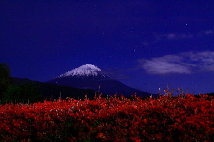 30年10月の富士(13)夜の西湖の富士_e0344396_18061926.jpg