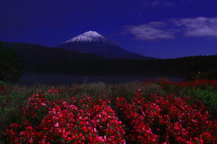 30年10月の富士(13)夜の西湖の富士_e0344396_18062871.jpg