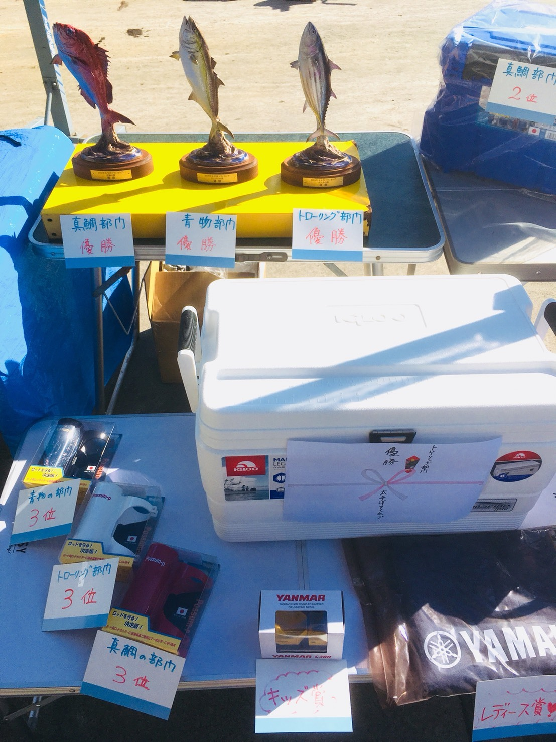 BOAY GAME FISHING in 高知 太平洋マリンcup 2018 レポート!_a0132631_15501484.jpg