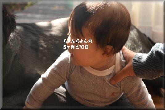 f0363141_10504358.jpg