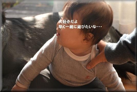 f0363141_10505597.jpg
