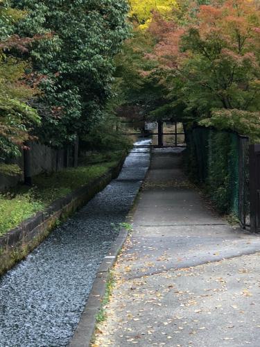 そうだ南禅寺に行こう!_e0292546_04030702.jpg