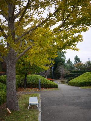 難波田城公園_a0027275_23111211.jpg