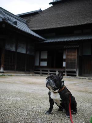 難波田城公園_a0027275_23112670.jpg