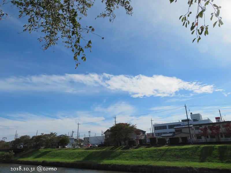 散歩の景色・花々 /小旅その3_f0067179_22084441.jpg