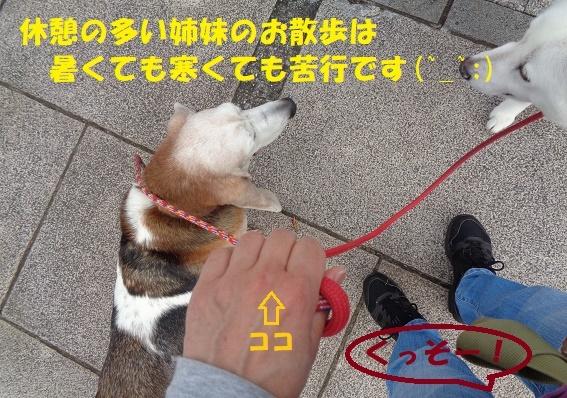 f0121712_00281043.jpg