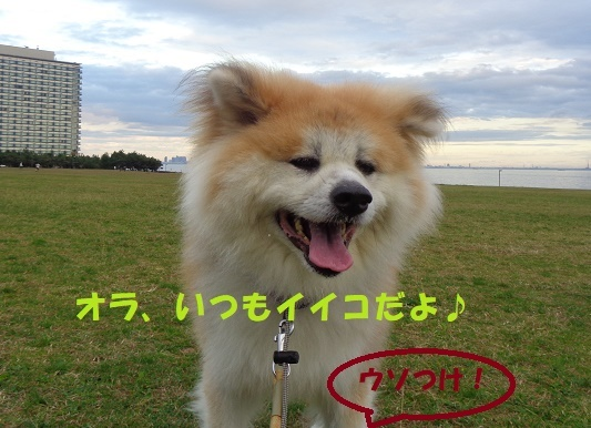 f0121712_00353979.jpg