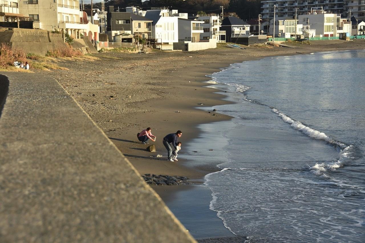きらめきの芒と海と・・・・_d0065116_19244725.jpg