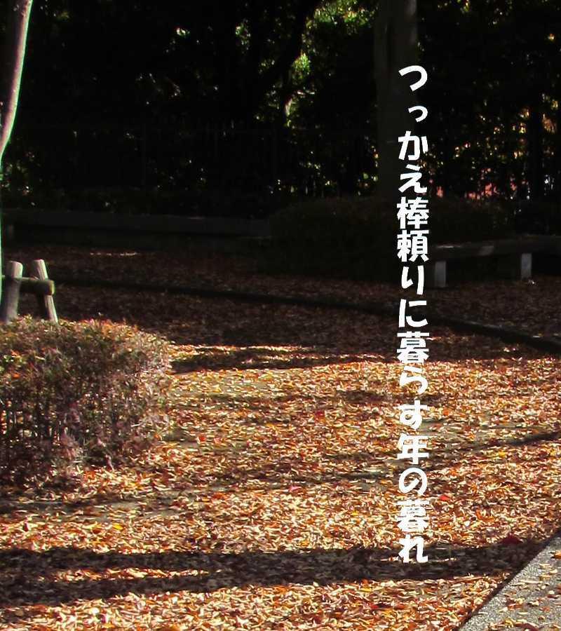 f0117041_05254241.jpg