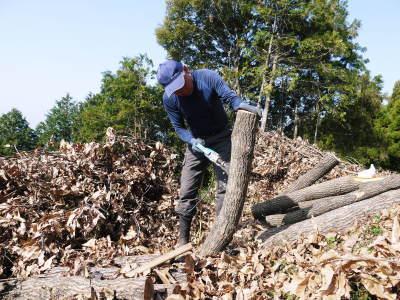原木しいたけ 平成30年度の『原木しいたけ』本日より予約受付スタートしました!_a0254656_18514908.jpg