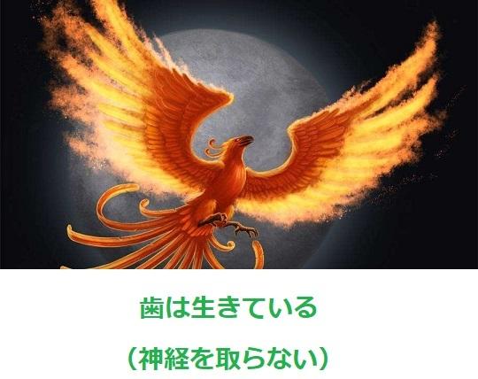 d0338857_04530672.jpg