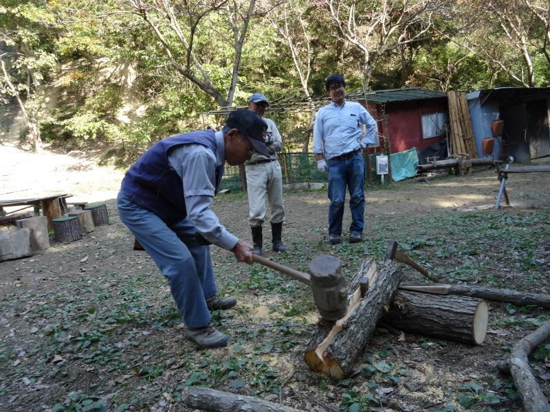 枯れ松 大木の伐採準備・・・孝子の森_c0108460_18060754.jpg