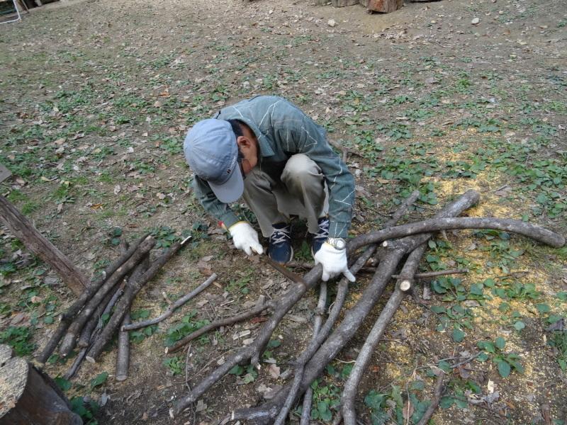 枯れ松 大木の伐採準備・・・孝子の森_c0108460_18060800.jpg