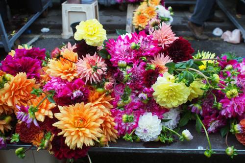 shibafロンドン日記_04 マーケットマニアFlower market.篇_e0243765_17043144.jpg
