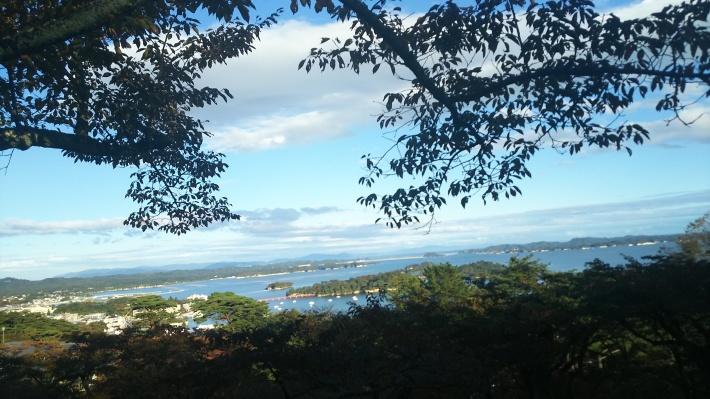 神戸から、仙台、松島へ✈️美しき人々と風光の記憶(2)_a0098174_07530226.jpg
