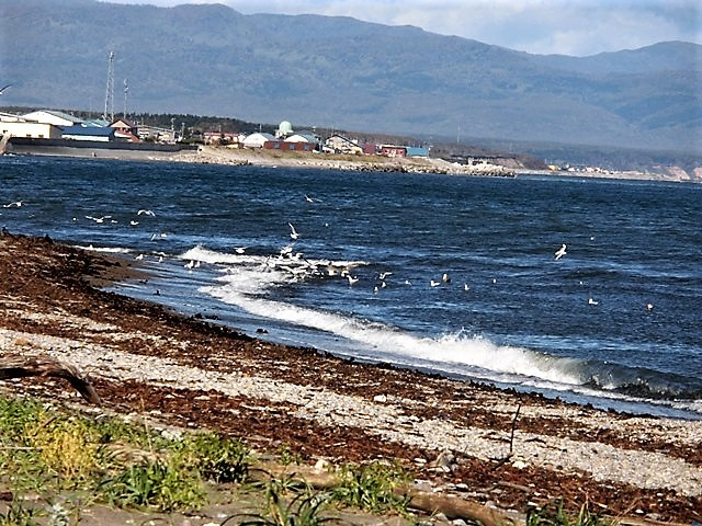 ANA北海道の旅@雄大な自然と北海道、札幌空港から中標津空港へこの便は最高、雌阿寒岳、阿寒湖、屈斜路湖そして摩周湖の絶景か広がる_d0181492_20322842.jpg