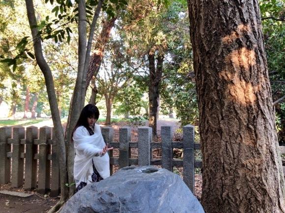 第2回・地球のカルマ解消イベントと京都ライトワークのご報告_a0167003_21130902.jpg