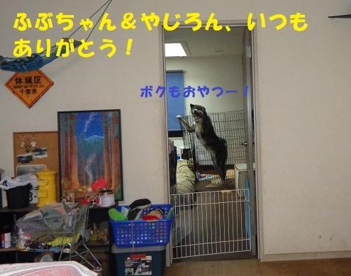 f0121712_14534208.jpg
