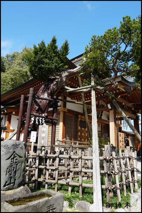 歌懸稲荷神社(山形)_b0019313_16543105.jpg