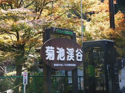 紅葉狩りシーズン到来!!(2018) 菊池渓谷の紅葉は今週末が見ごろです!_a0254656_18314290.jpg