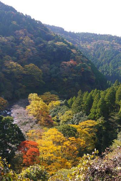 紅葉狩りシーズン到来!!(2018) 菊池渓谷の紅葉は今週末が見ごろです!_a0254656_18380377.jpg