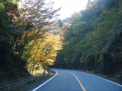 紅葉狩りシーズン到来!!(2018) 菊池渓谷の紅葉は今週末が見ごろです!_a0254656_18394812.jpg