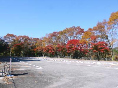 紅葉狩りシーズン到来!!(2018) 菊池渓谷の紅葉は今週末が見ごろです!_a0254656_18472632.jpg