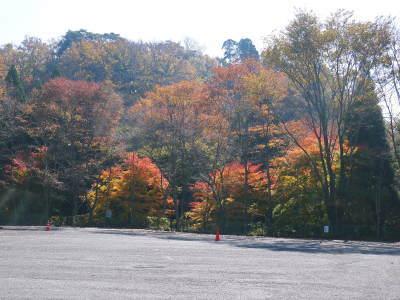 紅葉狩りシーズン到来!!(2018) 菊池渓谷の紅葉は今週末が見ごろです!_a0254656_18484113.jpg