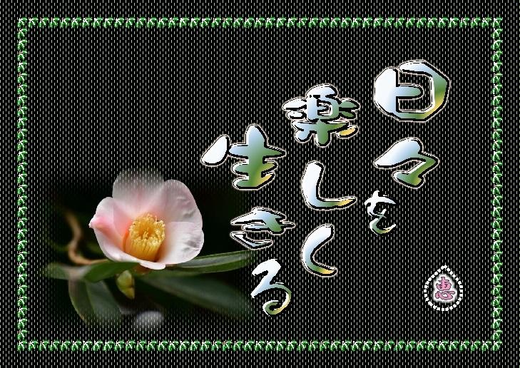 f0214467_03391154.jpg